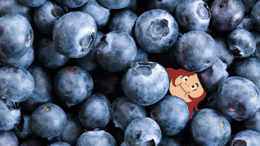 Nitton bast men ändå ett blåbär